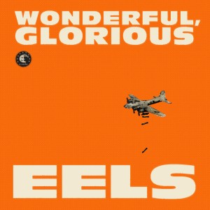 eels_wonderful_glorious